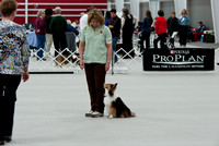 Rally Obedience 2011